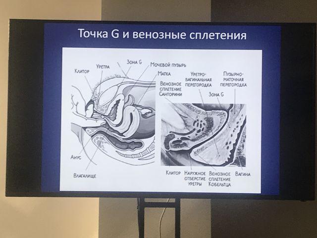 Кадавер-курс в Екатеринбурге, вагинальное сужение